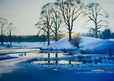 Swans on Bridgeknowe Loch